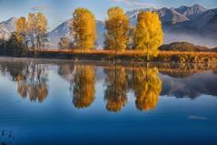 fiume adda (@antonello) Tags: colors landscape landscapes nikon fiume autunno atmosfera hdr paesaggio 1685 fiumeadda d300s