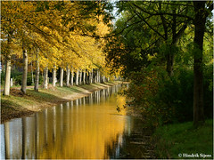Yellow Submarine (Hindrik S) Tags: yellow submarine leaves autumn hjerst herfst herbst westeinde canal gracht grêft water wetter tree trees reflection nature beam beammen bomen boom stam branch season seizoen sonyphotographing sony sonyalpha α57 a57 slta57 tamron 16300 f63 55mm 1125 iso100 tamronaf16300mmf3563diiivcpzdmacro 2015 amount