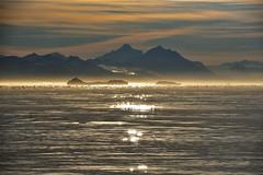 _DSC8271 (TC Yuen) Tags: glacier arctic greenland whales iceberg crusing floatingice polarregion greenlandeast