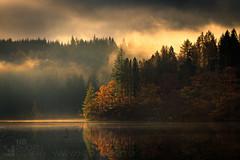 Loch Ard (GenerationX) Tags: autumn trees mist water silhouette sunrise reflections landscape dawn mirror scotland shadows cross unitedkingdom ducks scottish neil calm gb marker trossachs barr aberfoyle lochard kinlochard lochardforest canon6d