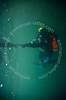 Plongée sous-marine en eau douce (36270 Eguzon Chantôme). (Emmanuel LATTES) Tags: man water strange sport swimming swim de point nager fly flying eau natural pointer finger floating scuba diving surface du fresh equipment suit doigt bubble environment diver aquatic reversed float fin palme douce quarry gilet wetsuit insolite homme grenouille plongée bulle freshwater environnement flooded limpid carrière watery deepsea glauque limpide naturel neoprene flotter plongeur renversé glaucous aquatique stabilisation sousmarine combinaison inondée équipement limpidity limpidité néoprène