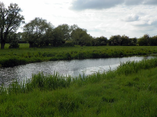 Godmanchester to St Ives 267: Cook's Stream, Godmanchester Nature Reserve