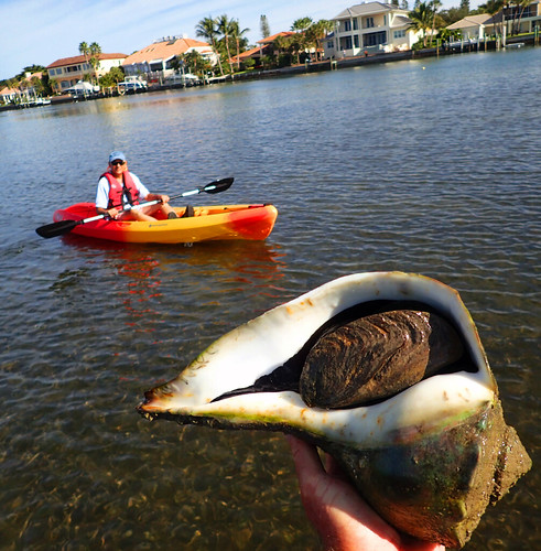 12_1_16 Kayak Tour Sarasota 02