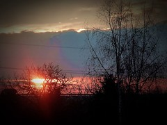 2016-12-08 sunset (14)f (april-mo) Tags: sunset sun sky ciel soleil coucherdesoleil december winter contrejour trees arbres landscape