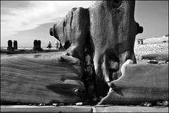 Wood (herman van hulzen) Tags: hermanvanhulzen uk england westwittering westsussex wood beach pebbles people