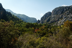 2016-10-11_Canon_039251 (l0pht) Tags: 2016 october olimpos turkey anatolia antik bay beach beautiful beauty buildings cliff east edge journey landscape mediterranean mountain mountains nature outdoors place road rock rocks rocky seascape travel çıralı чирали чиралы