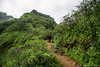 Rajgad Trek (somabrata) Tags: rajgad torna trek monsoon maharashtra travel landscape