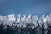 Ice cristals (donmaniglio) Tags: cristal blue photo photography closeup icecristal weather ice snow