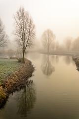 Beukenpark-8-1 (stevefge) Tags: beuningen mist nederland netherlands park winter water trees reflectyourworld reflections nl nature natuur gelderland landscape