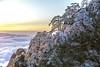 Icy sunrise (Gabriela Iacobuta) Tags: mountain rock tree pine ice sunrise sun clouds sky china huangshan asia centralasia
