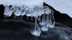 Ice in Rapid Tikkurilankoski (River Keravanjoki Vantaa, 20170112) (RainoL) Tags: 2017 201701 20170112 fastböle fin finland fz200 geo:lat=6028930870 geo:lon=2504319012 geotagged ice january keravanjoki kervoå kuninkaala nyland rapid river tikkurilankoski uusimaa vanda vantaa water winter