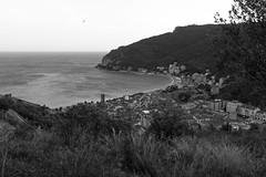 Liguria (fabiolug) Tags: noli town sea mediterraneansea mediterranean marligure marmediterraneo landscape beach tree trees nature liguria ligury italia italy leicammonochrom mmonochrom monochrom leicamonochrom leica leicam rangefinder blackandwhite blackwhite bw monochrome biancoenero 35mmsummicronasph 35mmf2summicronasph summicronm35mmf2asph summicron35mmf2asph 35mm summicron leicasummicron leica35mm