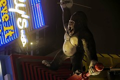 King Kong (Gary Burke.) Tags: kingkong building gorilla empirestatebuilding ripley believeitornot odditorium ripleysbelieveitornot touristattraction display museum robertripley cliftonhill niagarafalls canada ontario ca vacation travel canon eos 70d dslr canoneos70d klingon65 city garyburke canadian niagara fb architecture north tourism citylife cityliving wanderlust ape neon night evening lights traveling urban longexposure