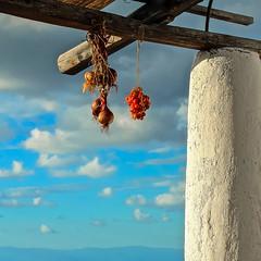 3 ... essentiality of the Aeolian Islands! (antonioprincipato) Tags: pulera pergolato pomodorini cipolle cielo nuvole filicudi isola eolie sicilia mediterraneo antonioprincipato