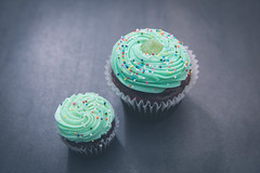 Cupcakes (MorboKat) Tags: toronto thebeaches thebeach food cupcake baking cake icing sprinkles cooking product baked bakedgoods green chocolate greenicing chocolatecupcake yummy delicious dessert tasty