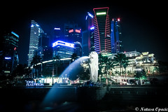 It's Better To Be A Lion For A Day Than A Sheep All Your Life (_Natasa_) Tags: singapore asia indonesia travel night nightphotography buildings skyscrapers lion architecture city longexposure lights banks water fountain waterfountain onefullerton canon canoneos7d sigma sigma1020mm natasaopacic natasaopacicphotography skyline widelens citylights