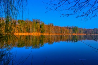 les étangs saint pierre.