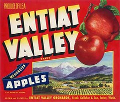 "Entiat Valley Red • <a style=""font-size:0.8em;"" href=""http://www.flickr.com/photos/136320455@N08/20850629573/"" target=""_blank"">View on Flickr</a>"