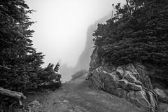 Soul Searching (writing with light 2422 [not pro}) Tags: blackandwhite monochrome fog landscape wideangle mountrainiernationalpark washingtonstate soulsearching sigma1020mmlens plummerpeak sonya77 richborder
