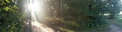 Hampstead Heath -London Borough of Camden (Dioniisus) Tags: trees light sunset panorama green london outdoors path camden panoramic trail borough hampstead shining