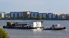 Steven B + Sea Devil (1) @ Gallions Reach 26-10-15 (AJBC_1) Tags: uk england london boat ship unitedkingdom crane vessel tugboat tug riverthames barge eastlondon gallionsreach nikond3200 northwoolwich newham seadevil londonboroughofnewham cranebarge stevenb herboschkiere marineengineering dlrblog livettsgroup ajc