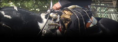 "Platería criolla (Eduardo Amorim) Tags: horse southamerica argentina silver caballo cheval plata pferde poncho cavallo cavalo gauchos pferd ayacucho argent pampa riendas hest pala hevonen apero gaucho prata badana 馬 américadosul carona boleadoras häst platería gaúcho 말 amériquedusud provinciadebuenosaires лошадь recado gaúchos 马 basto sudamérica suramérica américadelsur סוס südamerika cabresto حصان pilchas pretal άλογο buenosairesprovince facón pilchasgauchas recao pampaargentina cabestro americadelsud plateríacriolla rebenque sobrepuesto ม้า americameridionale boleadeiras rédeas eduardoamorim caronero chifle pampaargentino ""platería criolla"" ঘোড়া"