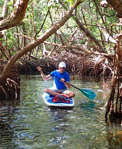 11_29_15 Private Paddle Tour Lido Key FL 12