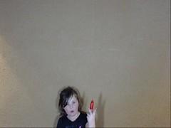 webcam132