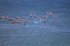 AJY_2978 (arika.otomamay) Tags: beach srilanka trincomalee