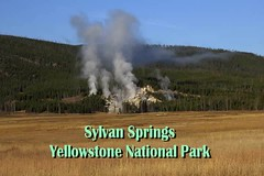 Sylvan Springs video montage (Chief Bwana) Tags: wy wyoming yellowstone yellowstonenationalpark nationalparks geyserbasin geothermal hotspring eveningprimrose eveningprimrosespring geyser mudpot paintpot sylvansprings psa104 video geyservideo 500views
