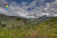 nurkowanie-travel-pl-111.jpg (www.nurkowanie.travel.pl) Tags: indonesia places papua baliem