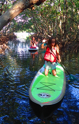 12_15_16 paddleboard tour Lido Key 04