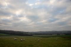 A Welsh Scene