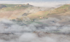 Under the fog (Federico Sasson) Tags: fog foggy morning mattina crete senesi valdorcia hills colline lake eos canon flickr cypress countryside toscana tuscany dawn farm verde green light shadow valle vallata nebbia