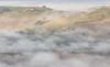 Under the fog (Federico Sasson) Tags: fog foggy morning mattina crete senesi valdorcia hills colline lake eos canon flickr cypress countryside toscana tuscany dawn farm verde green light shadow valle vallata nebbia