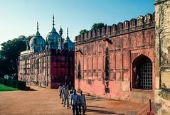 Hammam et mosquée (JiPiR) Tags: fortrouge ind inde indraprasthaestate newdelhi