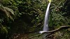 Emily Falls (Tomas Sobek) Tags: canterbury emilyfalls ferns gorge green moist moss newzealand peelforest slippery stream vegetation waterfall wet