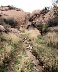 025 Heading Upstream (saschmitz_earthlink_net) Tags: 2017 california orienteering vasquezrocks aguadulce losangelescounty laoc losangelesorienteeringclub