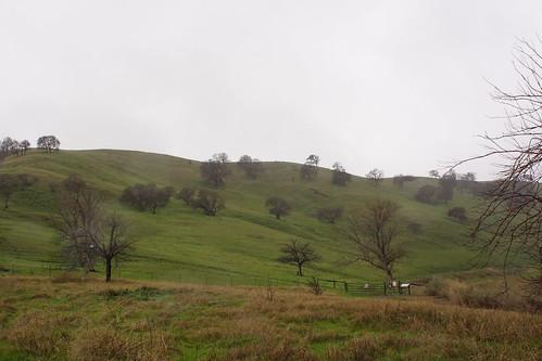 2017-01-12 Contra Loma Regional Park - Take 2 [#3]