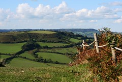 Golden Cap in October (janroles) Tags: outdoor landscape scenery flickr october canoneos400d goldencap dorset hills fields grass sky clouds fence bracken england hedgerows autumn explore