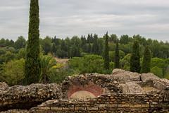 DSC_4126 (tesseracultural) Tags: italica santiponce sevilla romano roman spain andalucia españa tessera