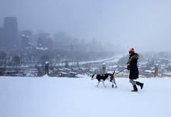 Snowy Jog (Sherlock77 (James)) Tags: calgary crescenthill snow winter streetphotography people woman dog