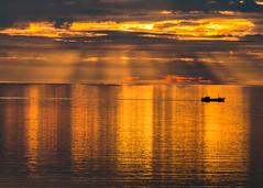 Sailing in to sunset/Siglt inn í sólarlagið (icecold46) Tags: iceland sunset sólarlag faxaflói skip sólstafir ship sunstripes golden gullitað gullinský goldencloud