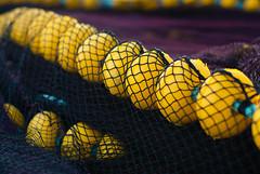 Atrapadas en la red (Oscar F. Hevia) Tags: red redes boya boyas boyasamarillas artesdepesca net nets buoy buoys yellowbuoys fishinggear asturias asturies españa lastres paraísonatural principadodeasturias spain atrapadasenlared trappedinthenet