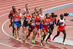 IMG_3642 (AndrewD123) Tags: sports olympics 100mfinal goldmedal london athletics