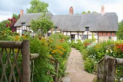 (##2.719) Anne Hathaways Cottage (unicorn 81) Tags: cottage annehathawayscottage shottery stratforduponavon shakespeare britain greatbritain grosbritannien gb architecture architektur halftimberedhouse