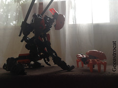 Torkiti made a friend. #bionicle #lego #bioniclemoc #legobionicle (geoastrocat) Tags: lego bionicle legobionicle matanui mymoc torkiti mylegomoc fornui
