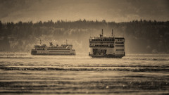"""Coming and Going"" (Terry Green) Tags: park ferry casey washington nikon state orchard ft keystone pt vr coupeville wsf kennewick salish 600mm whidbeyislandwashington d4s terrygreen"