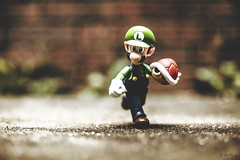 Turtle Toss (3rd-Rate Photography) Tags: canon toy actionfigure 50mm florida nintendo shell videogame jacksonville 365 mariobros luigi supermariobros trutle shfiguarts 5dmarkiii earlware 3rdratephotography