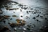 Heijastus (timoppi) Tags: nature finland helsinki outdoor balticsea syksy vuosaari kallahti ulkoilu